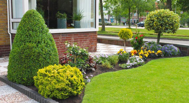 Decoração de jardim: como escolher o piso certo para mim