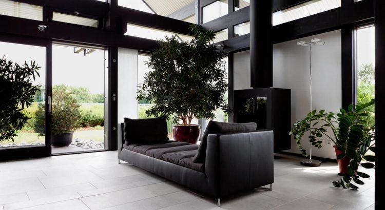 Veja como usar flores e plantas na decoração da casa